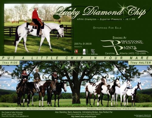 Lucky Diamond Chip